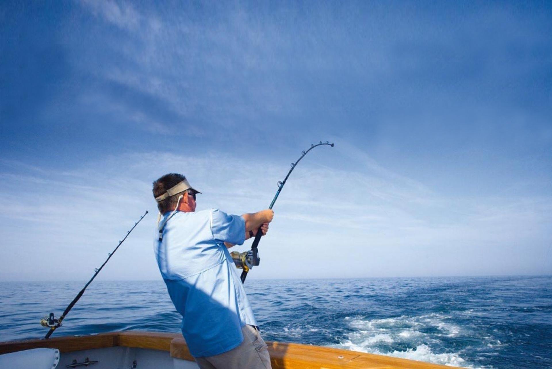Acrartex news mackerel hero
