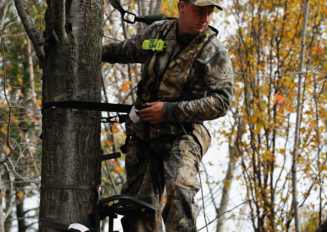 Lead image tree stand plb